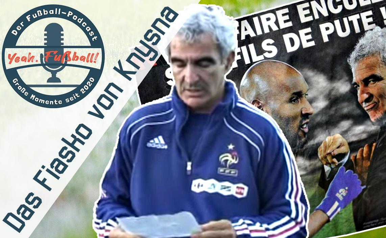 frankreich wm 2010